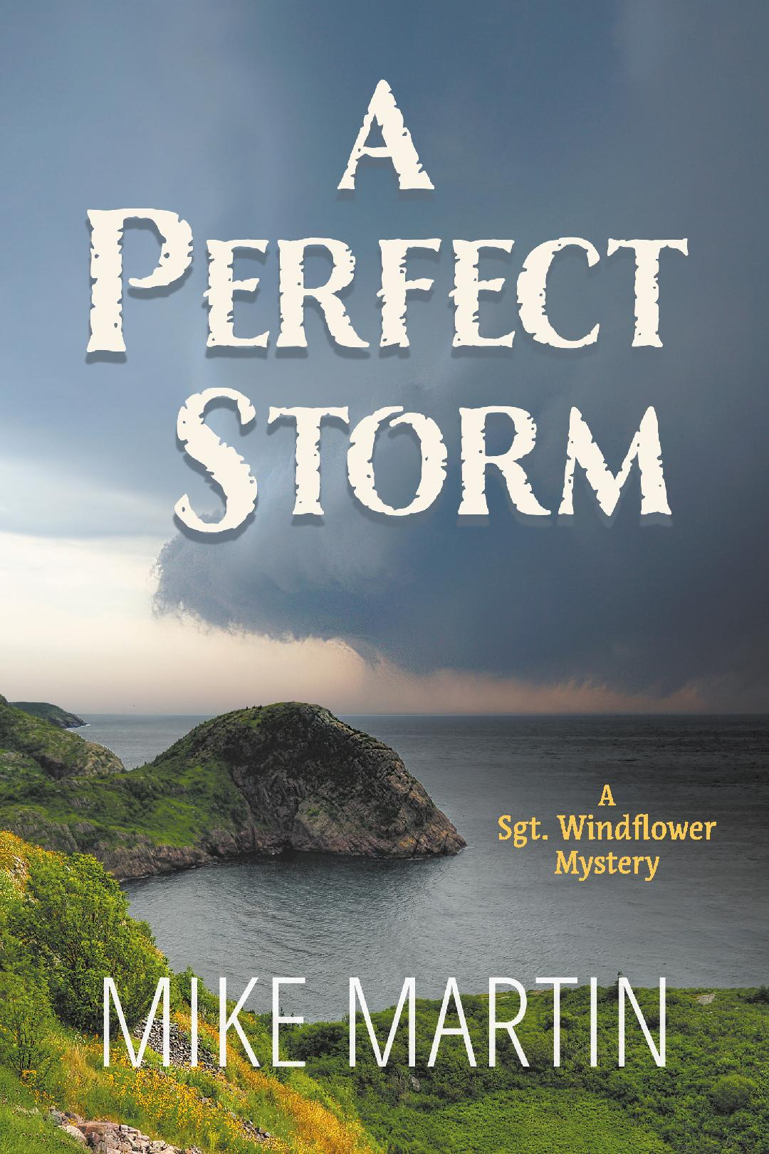Cover A Perfect Storm